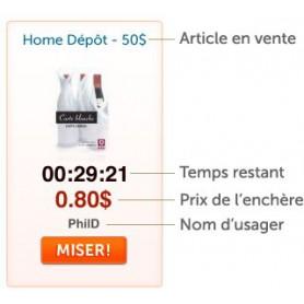 Site vente enchère chronométré seconde